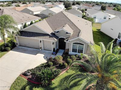 The Villages Single Family Home For Sale: 2137 Foggy Brook Loop