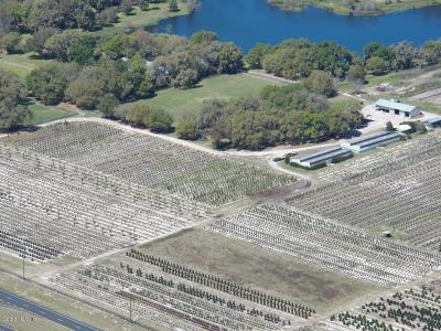 Ocala Residential Lots & Land For Sale: S Hwy 484 & 475