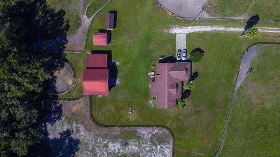 Ocala Farm For Sale: 12865 Hwy 40