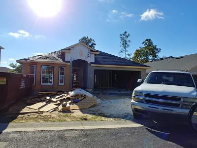 Ocala Single Family Home For Sale: 16 Diamond Ridge Way