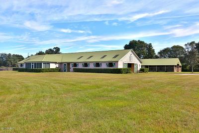 Ocala Farm For Sale: 6395 S Magnolia Ave Avenue
