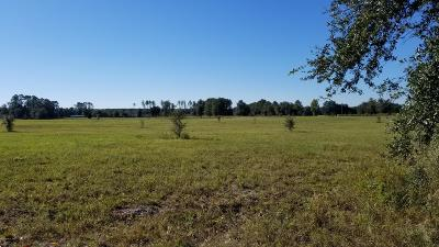 Residential Lots & Land For Sale: Lot 1 NE 150th Avenue