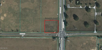 Ocala Residential Lots & Land For Sale: SW 60th Avenue