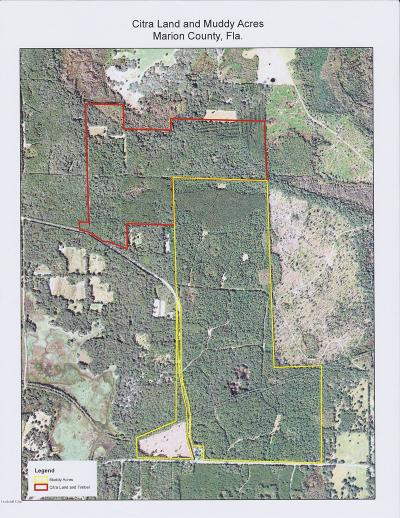 Citra Residential Lots & Land For Sale