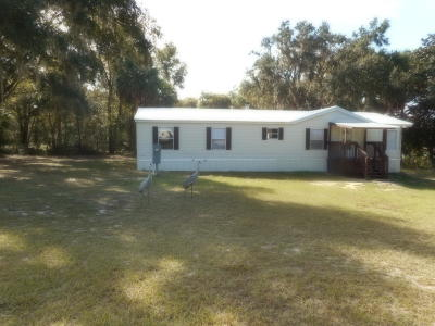 Ocklawaha Single Family Home For Sale: 18346 SE 90th Lane Lane