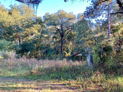 Ocala Residential Lots & Land For Sale: 2920 NE 28th Street