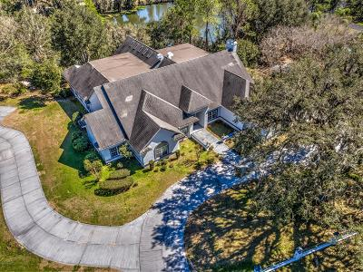 Ocala Single Family Home For Auction: 5405 SE 28th Avenue