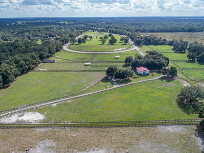 Summereffield, Summerfield, Summerfield Fl, Summerfiled Farm For Sale: 17490 S Highway 475