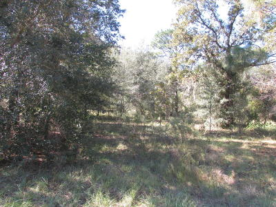 Dunnellon Residential Lots & Land For Sale: SW 209th Court Rd