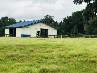 Ocala Farm For Sale: 12600 Us Highway 27