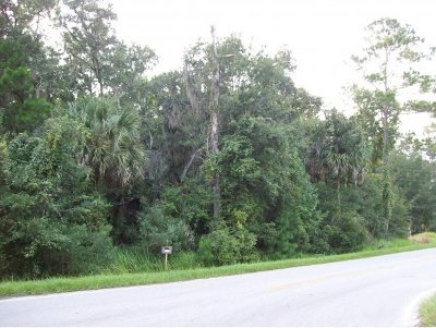 Micanopy FL Residential Lots & Land For Sale: $31,000