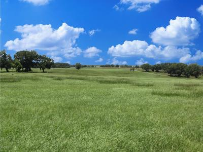 Dunnellon Residential Lots & Land For Sale: SW 10th Street