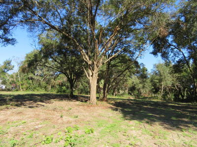 Weirsdale FL Residential Lots & Land For Sale: $75,000