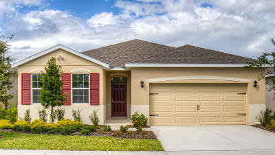 Ocala Single Family Home For Sale: 9134 SW 62nd Terrace Road