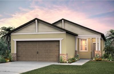 Ocala Single Family Home For Sale: 9731 SW 76 Lane Road Street