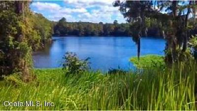 Citrus County Residential Lots & Land For Sale: 11637 N Hume Point