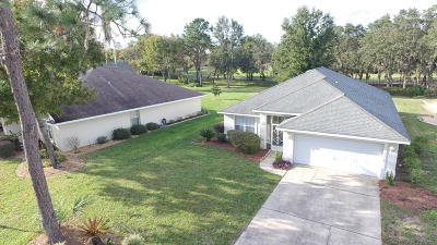 Ocala Single Family Home For Sale: 724 Lake Diamond Avenue