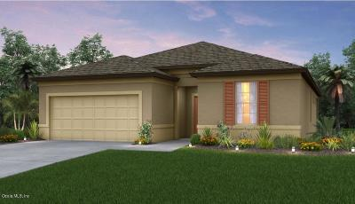 Ocala Single Family Home For Sale: 7547 SW 97th Avenue