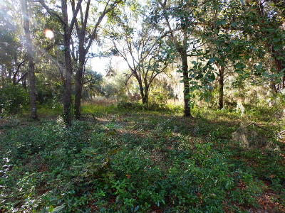 Citrus County Residential Lots & Land For Sale: 5788 W Riverbend Road