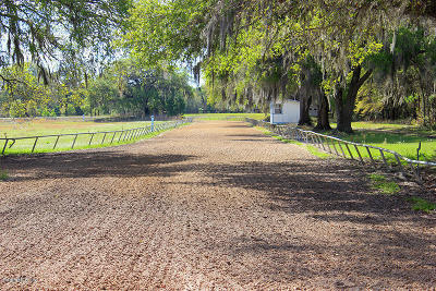 Ocala Farm For Sale: Tbd1090 SW 110th Avenue