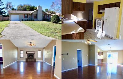 Ocala Single Family Home For Sale: 4240 NE 3rd Court