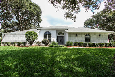 Citrus County Single Family Home For Sale: 251 E Ireland Court