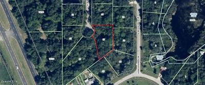 Citrus County Residential Lots & Land For Sale: 5830 N Summerlake Point
