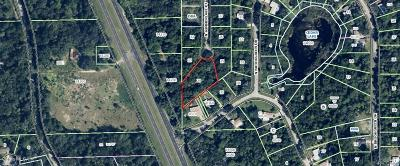 Citrus County Residential Lots & Land For Sale: 5820 N Summerlake Point