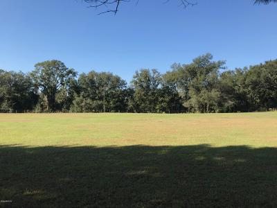 Levy County Residential Lots & Land For Sale: SE 175th Court