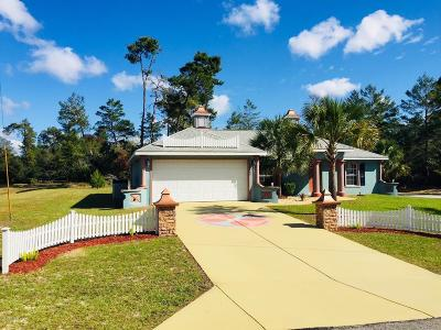 Ocala Single Family Home For Sale: 17045 SW 41st Ave Road