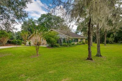 Ocala Farm For Sale: 12090 NW 100th Street