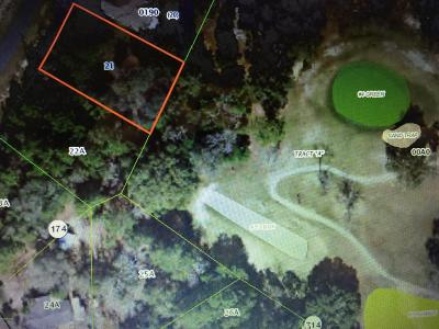 Citrus County Residential Lots & Land For Sale: 8181 N Upland Drive
