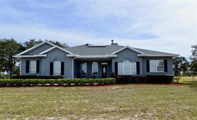 Lake County, Sumter County Single Family Home For Sale: 40434 Thomas Boat Landing Road