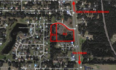 Belleview Residential Lots & Land For Sale: S Us Hwy 301
