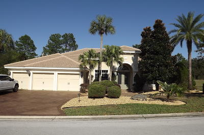 Dunnellon Single Family Home For Sale: 17819 SW 61st Lane Road