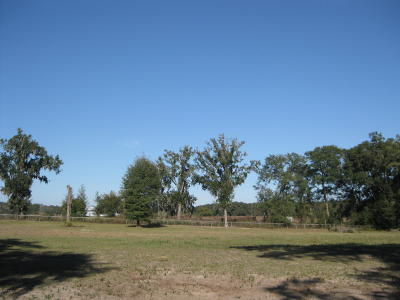 Ocala Farm For Sale: NW 8th Lane