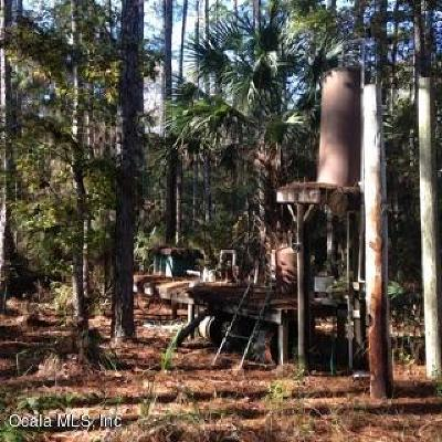 Levy County Residential Lots & Land For Sale: 2951 SW Wildhog Trail