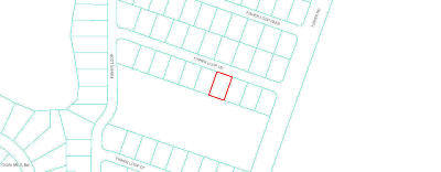 Citrus County, Levy County, Marion County Residential Lots & Land For Sale: Fisher Loop Lane