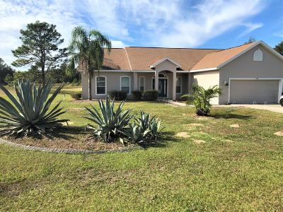 Ocala Single Family Home For Sale: 11384 SW 58th Circle