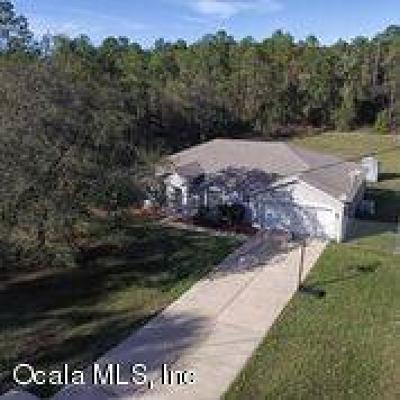Ocala Single Family Home For Sale: 16283 SW 55th Street