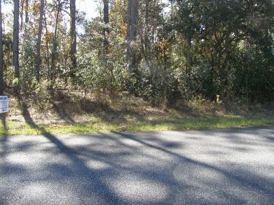 Citrus County Residential Lots & Land For Sale: 1538 W Barlow Place
