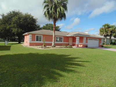 Ocala Single Family Home For Sale: 9865 SW 59 Circle Circle