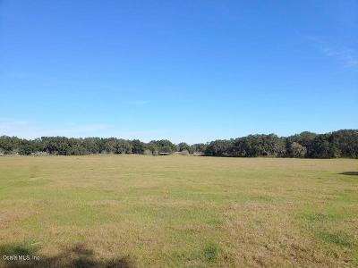 Summereffield, Summerfield, Summerfield Fl, Summerfiled Residential Lots & Land For Sale: 40ac SE Hwy 42