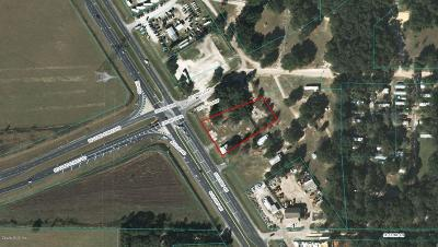 Summerfield, Summerfield Fl Residential Lots & Land For Sale: 13167 S Hwy 441
