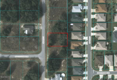 Ocala Residential Lots & Land For Sale: 16361 SW 16 Court