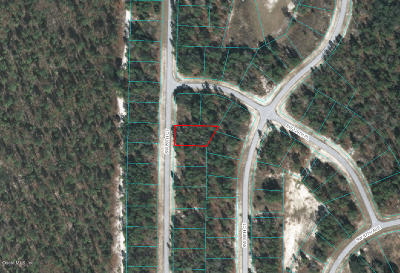Ocala Residential Lots & Land For Sale: SW 89 Court
