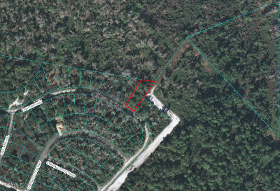 Ocala Residential Lots & Land For Sale: Oak Lane Way