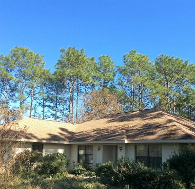 Dunnellon Single Family Home For Sale: 8945 SW 212th Court
