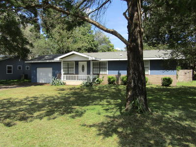Dunnellon Single Family Home For Sale: 17661 SW 116th Place