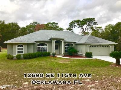 Ocklawaha Single Family Home For Sale: 12690 SE 115th Avenue
